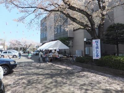 2014年「桜を楽しむ会」-1