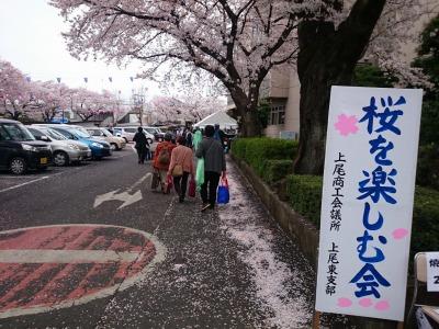 桜を楽しむ会201504-1